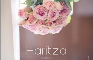 Haritza